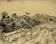 Lea Grundig: Sonnenblumenfeld