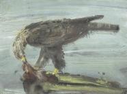 Adler mit Beute